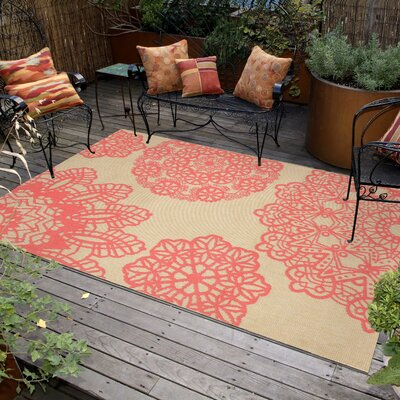 Devondra Crochet Pink/Beige Indoor/Outdoor Area Rug Rug Size: 111 x 211