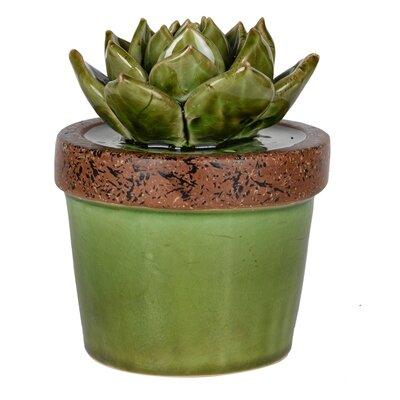 Ceramic Echeveria  Plant Sculpture in Green Pot Size: 5.5
