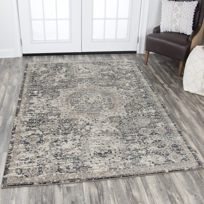 Kris Gray Area Rug Rug Size: Rectangle 33 x 53