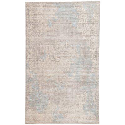 Julien Gray/Ivory Area Rug Rug Size: 2 x 3