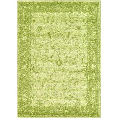 Shailene Light Green Area Rug Rug Size: Rectangle 4 x 57