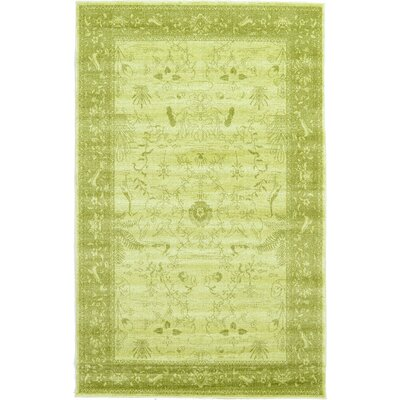 Shailene Light Green Area Rug Rug Size: Rectangle 5 x 8