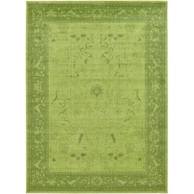 Imperial Light Green Area Rug Rug Size: Rectangle 8 x 11