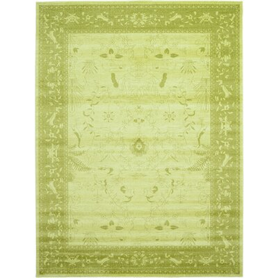 Lisbon Light Green Area Rug Rug Size: Rectangle 9 x 12