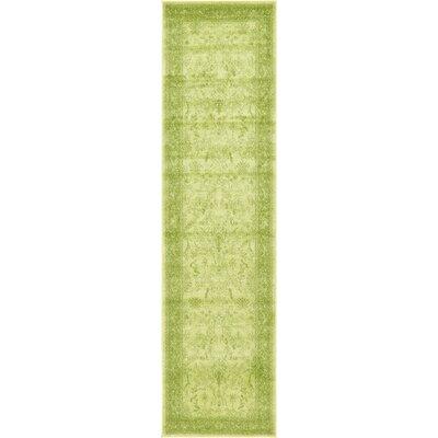 Imperial Light Green Area Rug Rug Size: Runner 27 x 10