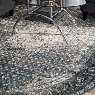 Culemborg Vintage Blue Area Rug Rug Size: Oval 511 x 9