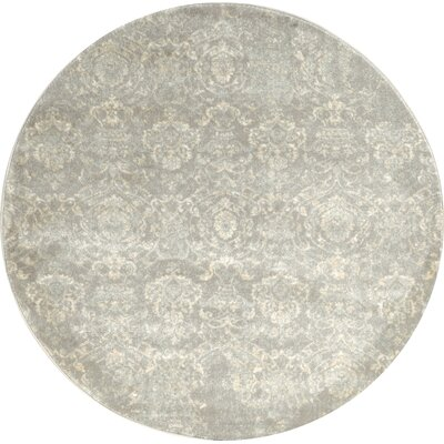 Kingfisher Gray Area Rug Rug Size: Round 53