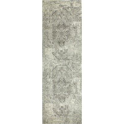 Arlingham Ivory/Gray Area Rug Rug Size: Runner 26 x 8
