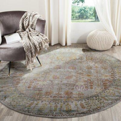 Bernardyn Gray/Multi Area Rug Rug Size: Round 67 x 67