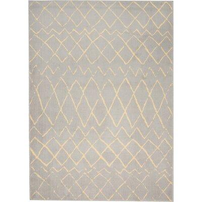 Sandra Gray Indoor Area Rug Rug Size: 53 x 73