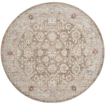 Jared Brown Area Rug Rug Size: Round 6