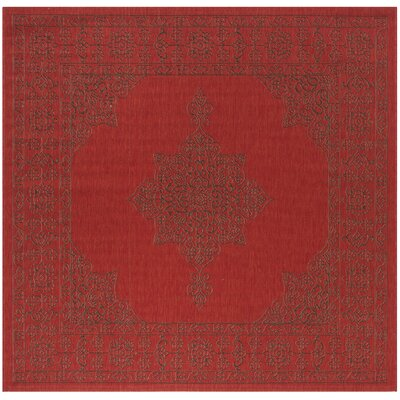 Amedee Red Indoor/Ourdoor Area Rug Rug Size: Square 67