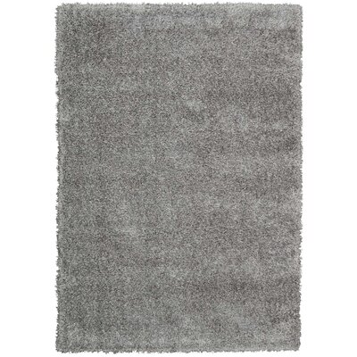 Moindou Gray Area Rug Rug Size: Rectangle 53 x 73
