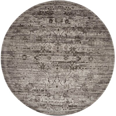 Arabelle Silver Area Rug Rug Size: Rectangle 99 x 139