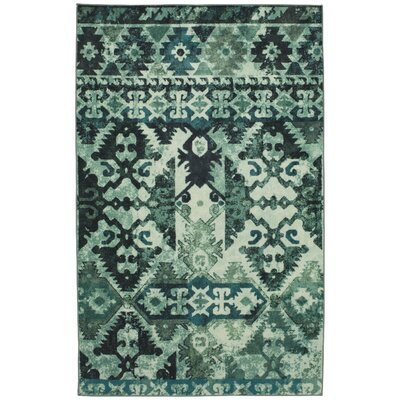 Barkhampstead Aqua Area Rug Rug Size: Rectangle 5 x 8