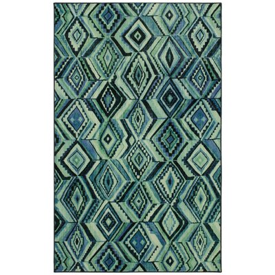 Barkhampstead Aqua Area Rug Rug Size: Rectangle 8 x 10