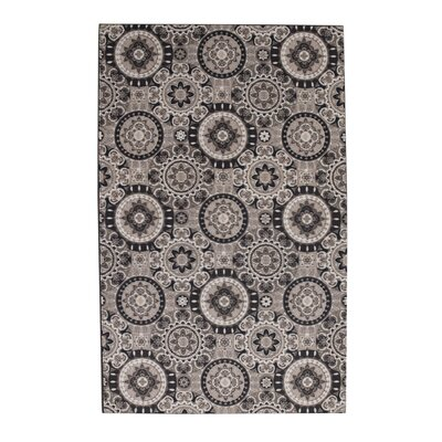Dario Black/Gray Area Rug Rug Size: Rectangle 8 x 10