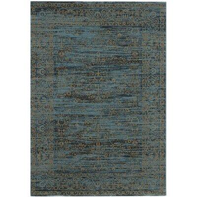 Zennia Turquoise & Gold Area Rug Rug Size: Rectangle 51 x 76
