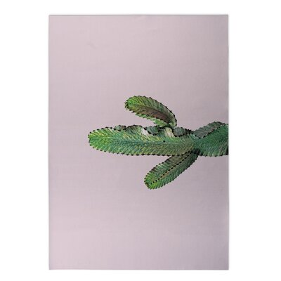 Mehar Dancing Cactus Pink Indoor/Outdoor Area Rug Size: Rectangle 4' x 5'