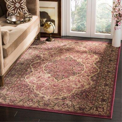 Goshen Rose Area Rug Rug Size: Rectangle 53 x 76
