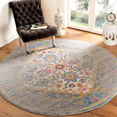 Esparza Boho Light Gray Area Rug Rug Size: Round 67