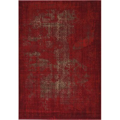 Saliba Red Area Rug Rug Size: Rectangle 67 x 96