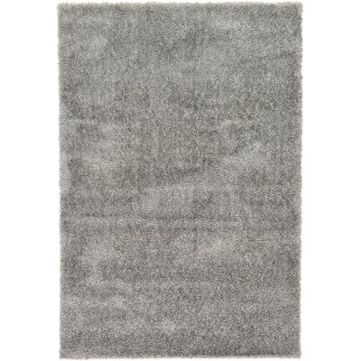 Evelyn Gray Area Rug Rug Size: 6 x 9