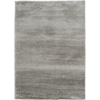 Evelyn Gray Area Rug Rug Size: 7 x 10