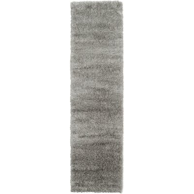 Evelyn Gray Area Rug Rug Size: Runner 27 x 10