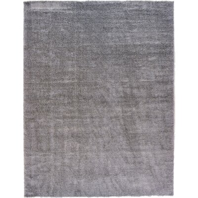 Evelyn Gray Area Rug Rug Size: Rectangle 122 x 16
