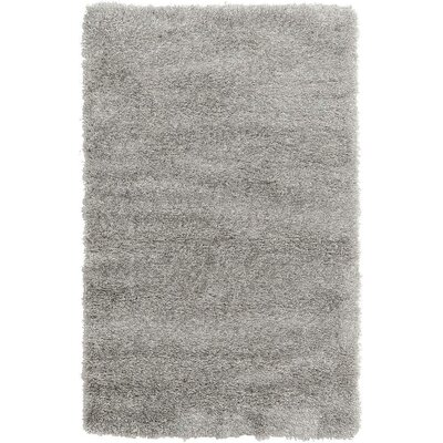 Evelyn Gray Area Rug Rug Size: 33 x 53