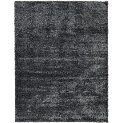 Evelyn Black Area Rug Rug Size: 9 x 12