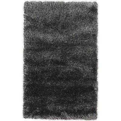 Evelyn Black Area Rug Rug Size: 33 x 53