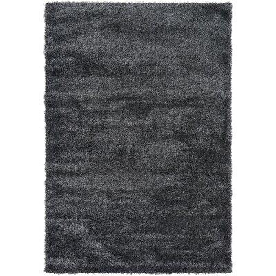 Evelyn Black Area Rug Rug Size: 5 x 8