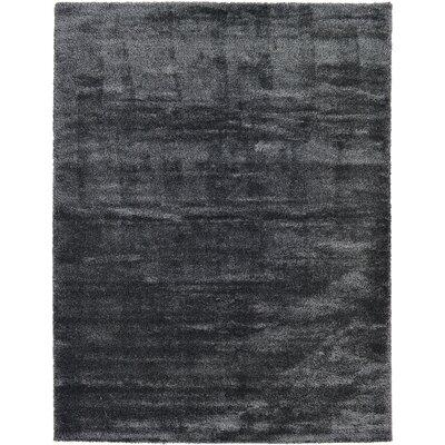 Evelyn Black Area Rug Rug Size: 10 x 13