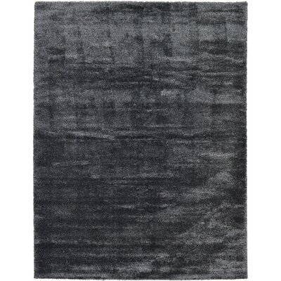 Evelyn Black Area Rug Rug Size: 122 x 16
