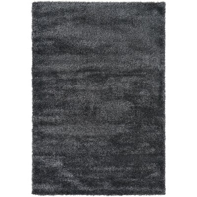 Evelyn Black Area Rug Rug Size: 6 x 9