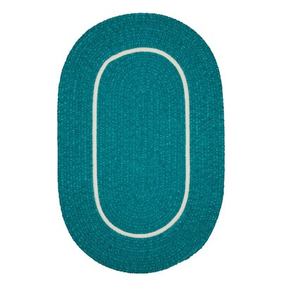 Jay Hand-Woven Teal Indoor/Outdoor Area Rug Rug Size: Oval 4 x 6
