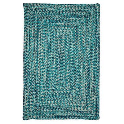 Giovanni Hand-Woven Blue Outdoor/Indoor Area Rug Rug Size: 5 x 8