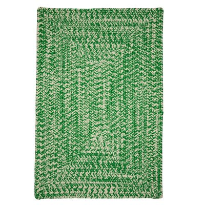 Giovanni Hand-Woven Green Outdoor Area Rug Rug Size: Rectangle 7 x 9