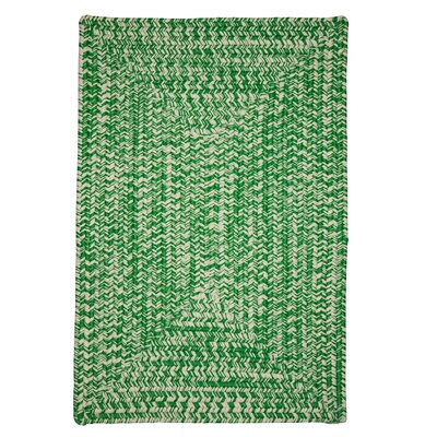 Giovanni Hand-Woven Green Outdoor Area Rug Rug Size: 3 x 5