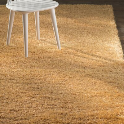 Evelyn Orange Area Rug Rug Size: 27 x 65