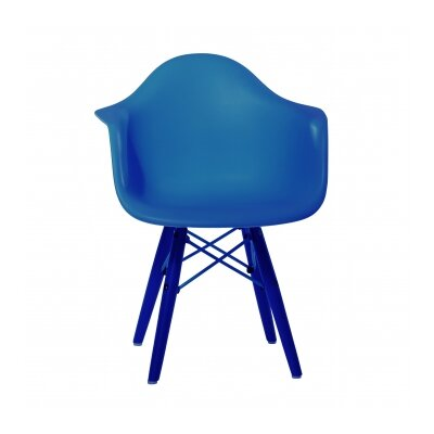 Rayan Armchair Finish: Blue