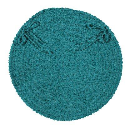Jere Chair Cushion Fabric: Teal