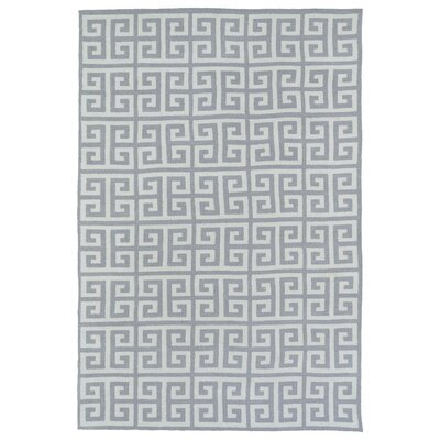 Aaron Gray Area Rug Rug Size: Rectangle 8 x 10