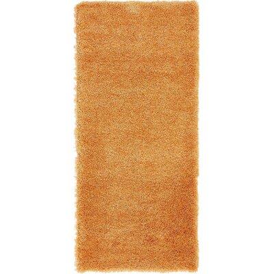 Evelyn Orange Area Rug Rug Size: 27 x 65