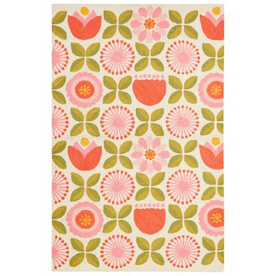 Annie Rug in Pink/Green Rug Size: 3 x 5