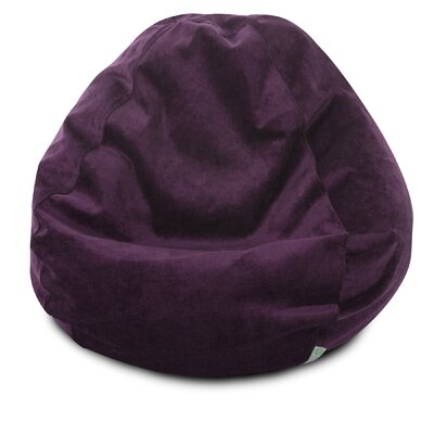 Micro Velvet Bean Bag Chair Color: Aubergine