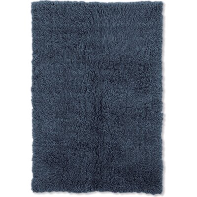 Kathleen Hand-Woven Blue Kids Rug Rug Size: Rectangle 36 x 56