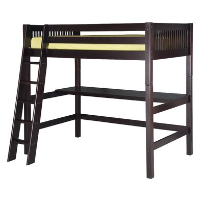Oakwood Twin Loft Bed Finish: Cappuccino